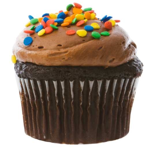small%20chocolate%20cupcake.jpg