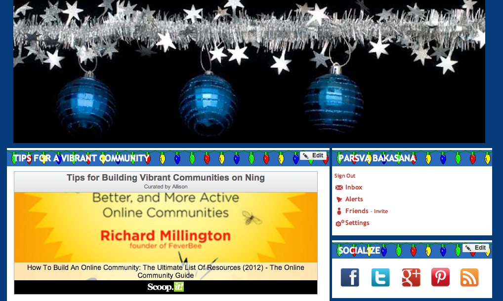 Ning Network holiday design main page CSS and JavaScript