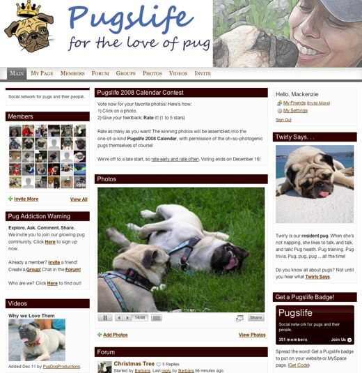 Pugslife-2-1.jpg