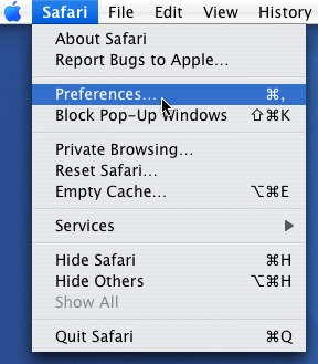 Clear Cookies in Safari 1