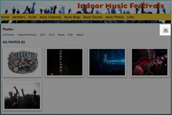 All Photos - Photos - Indoor Music Festivals