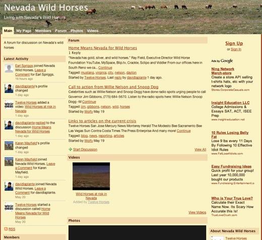 Roaming with Nevada's Wild Horses