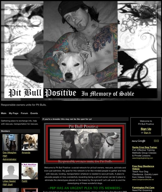 Rescue pit bulls in need at Pit Bull Positive