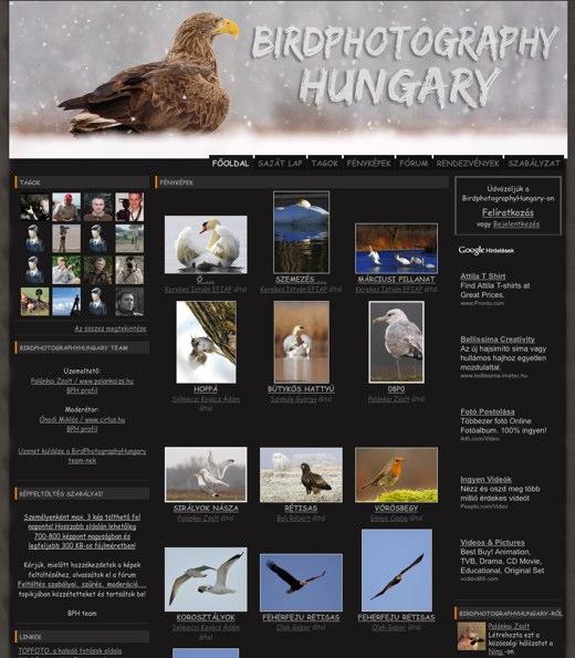 birdphotographyhungary