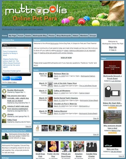 muttropolis-online-pet-park-muttropolis-a-utopia-for-pets-and-their-parents